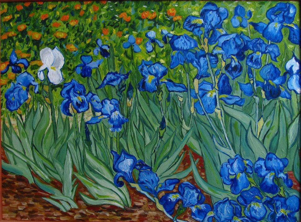 Описание картины Ван Гога «Ирисы»