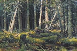 Иван Шишкин. Бурелом (Вологодский лес).