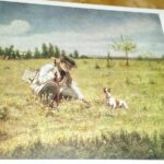 Сочинение по картине В. Г. Перова «Ботаник»